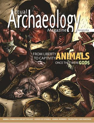 Picture of Actual Archaeology: ANIMALS