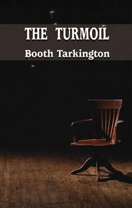 Picture of The Turmoil by Booth Tarkington