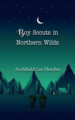 Picture of The Boy Scouts in Northern Wilds